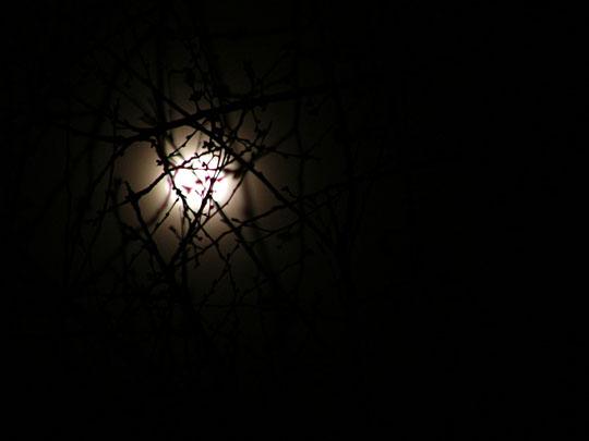 A hazy moon